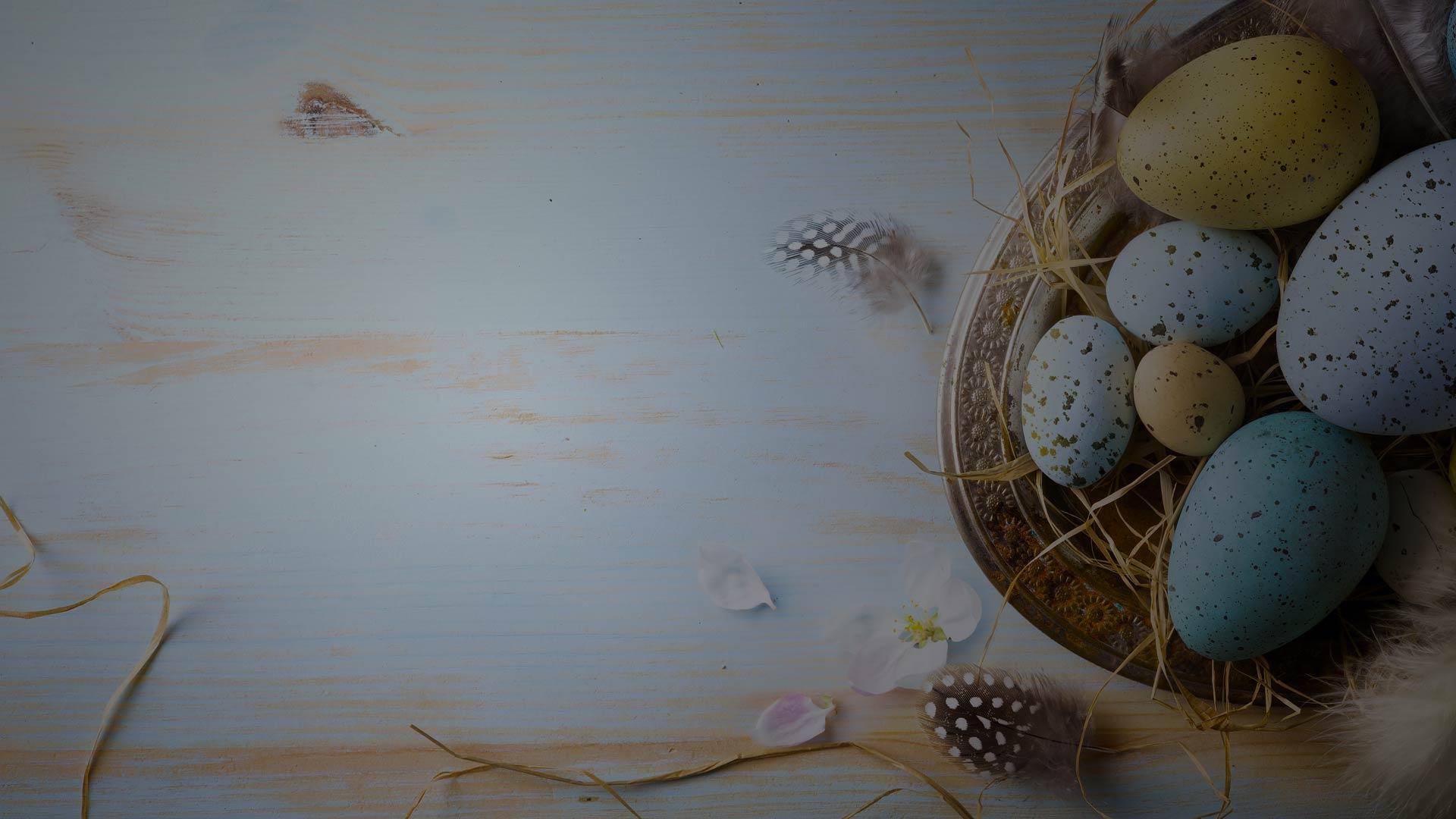 Öffnungszeiten Ostern | marx Holzhandel in Neuried bei Offenburg